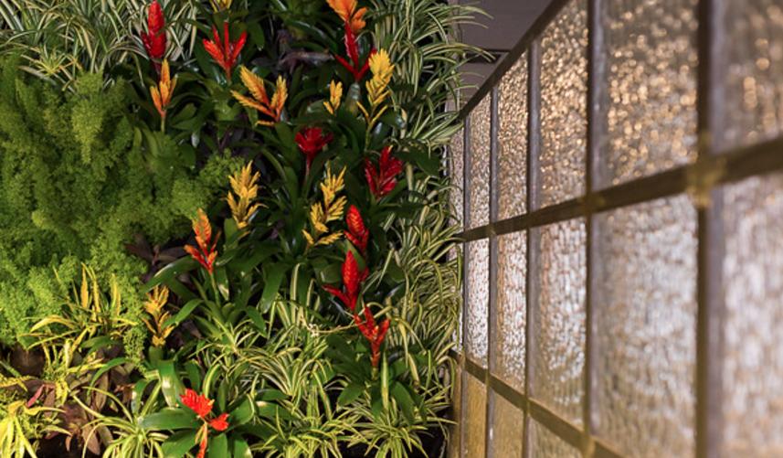 antojeria-buhaira-jardin